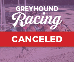 Greyhound Racing Canceled